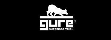 GURE SHEEPDOG TRIAL